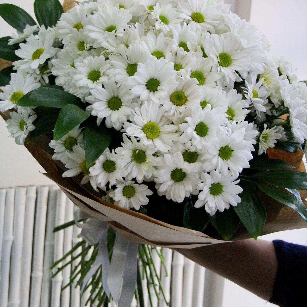 Букет из белых хризантем большой