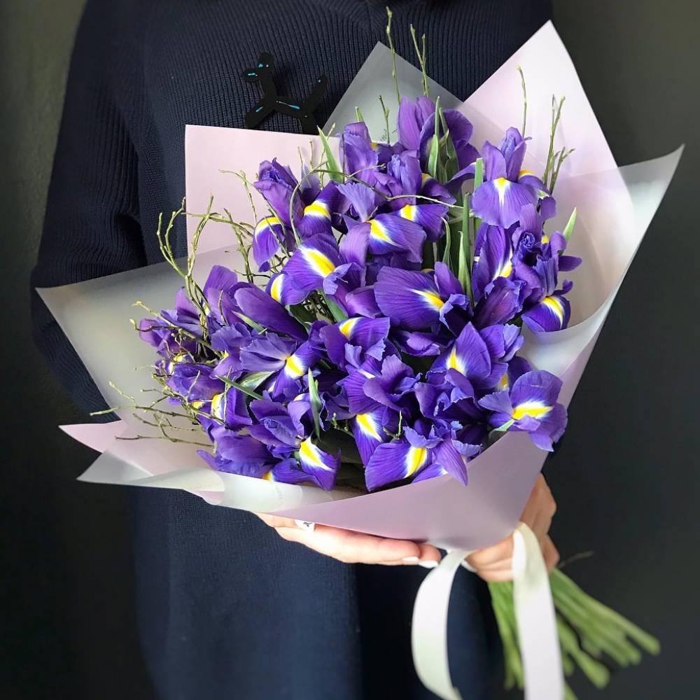 Фото цветы ирисы букет