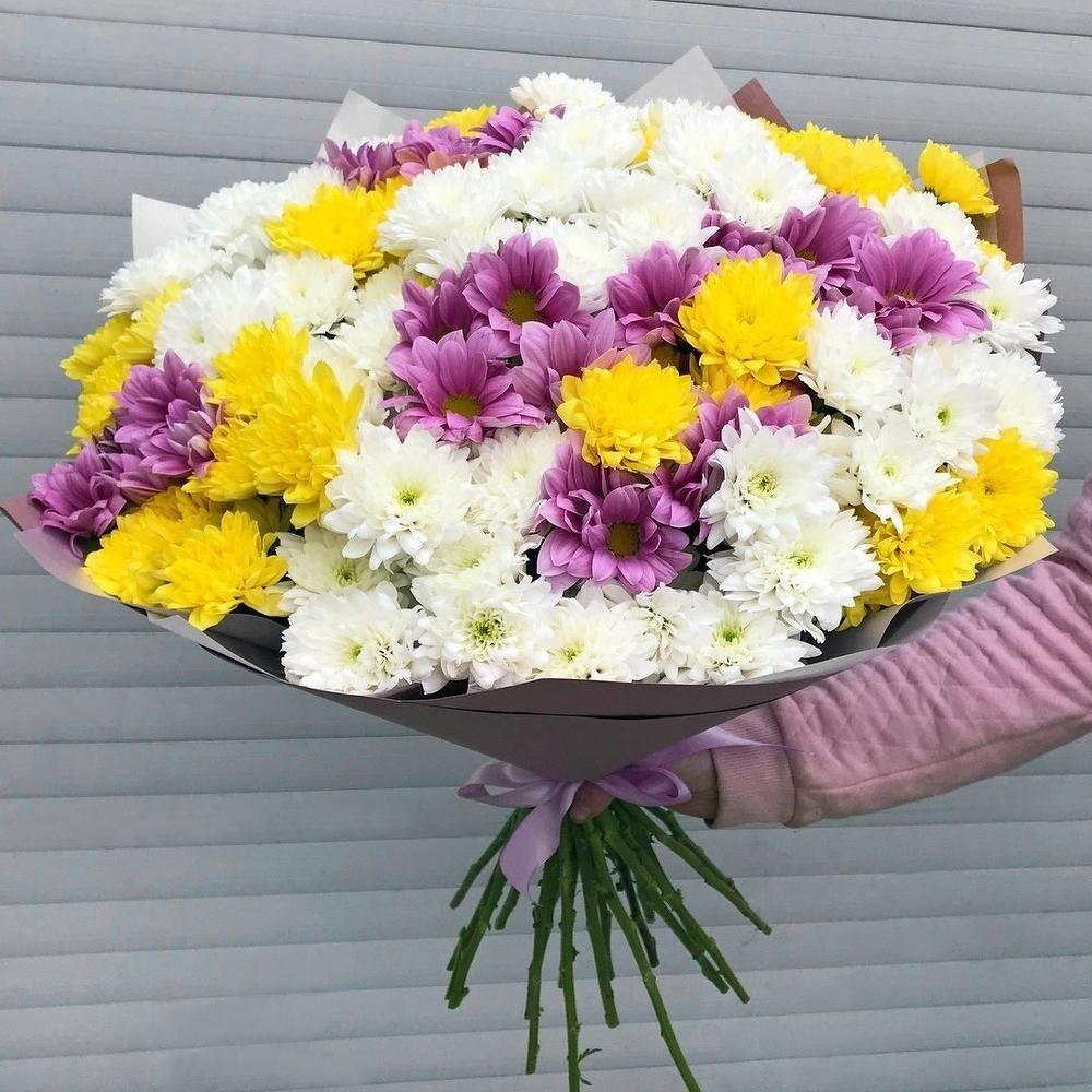 Картинка хризантемы букет