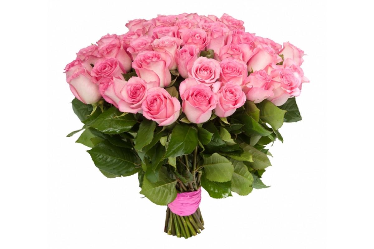 сделать розовые розы фото букеты красивые конура