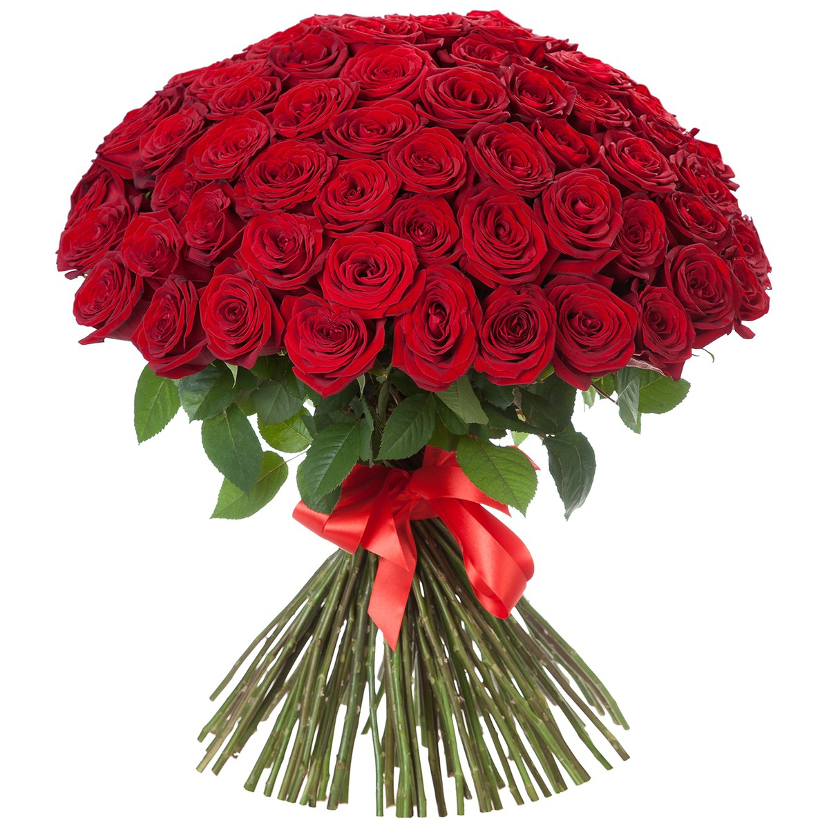 Фото розы букетов